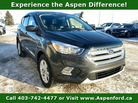 2019 Ford Escape 4dr Se Fwd
