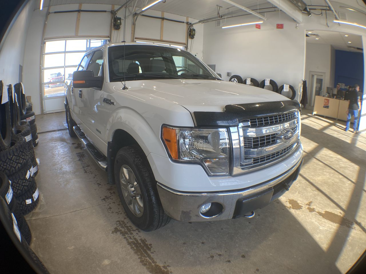 2014 Ford F-150 XLT (8682A) Main Image
