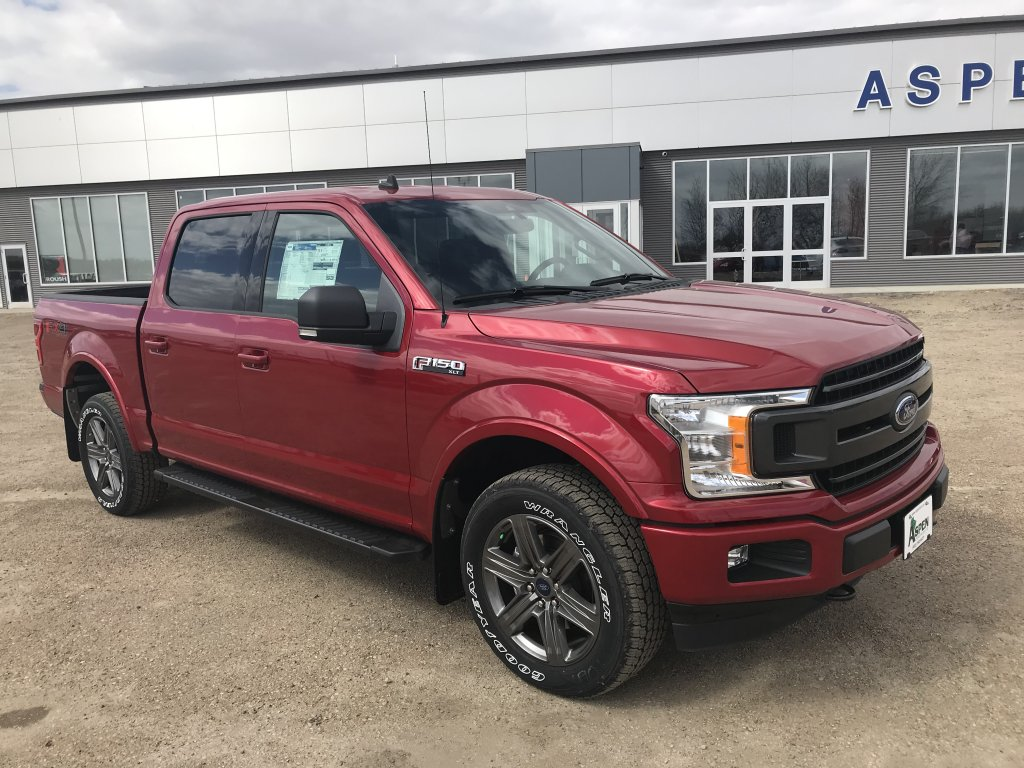 2020 Ford F-150 XLT (8704) Main Image