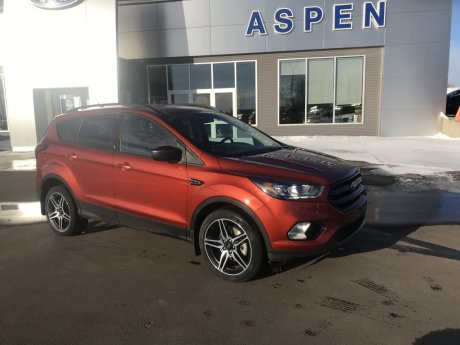 2019 Ford Escape 4dr SEL AWD