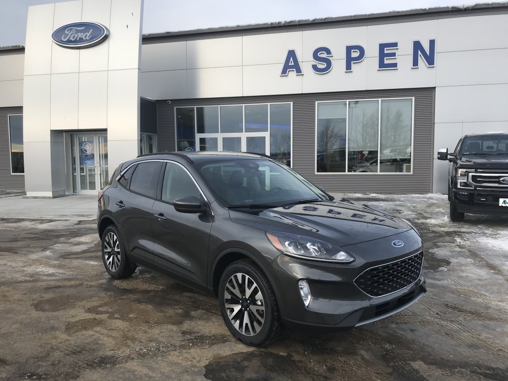 2020 Ford Escape Sel (8861) Main Image