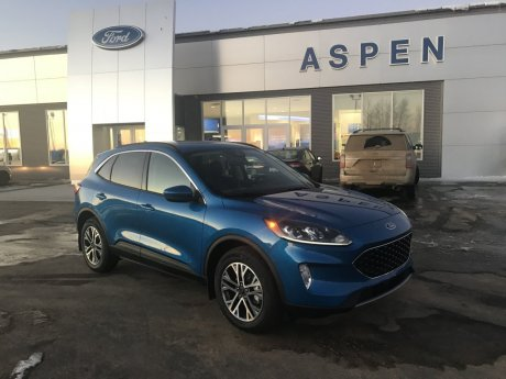2020 Ford Escape SEL - 2.0L